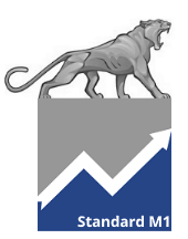 Online Marketing Paket Standard M1