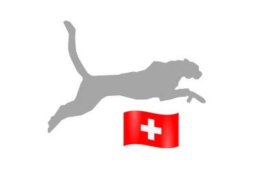 SEO SEM Schweiz