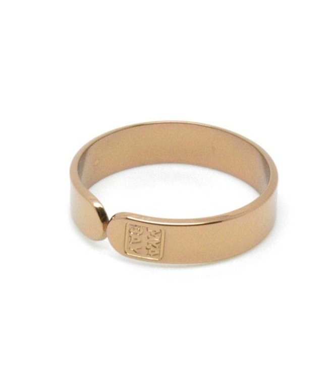 Mya Bay Ring Dream Big brons