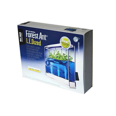 Antquarium Ledlight Forest Ant Farm
