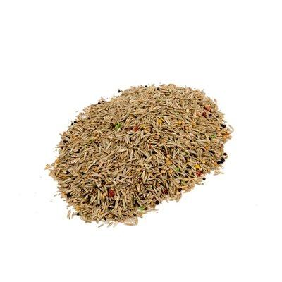 Mixture various grass and bird seeds