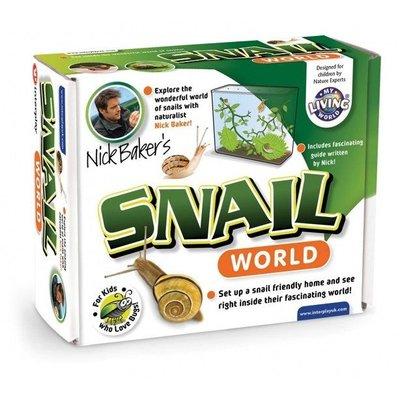 Snails stay