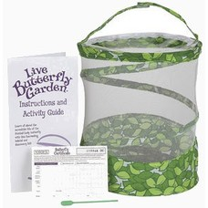 Butterfly growing kit