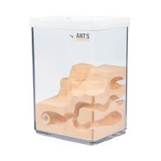 Ant Farm Cube L