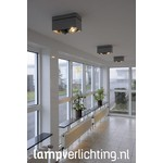Halogeenspots Architect 2xES111