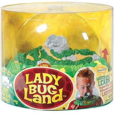 Insecten verblijf