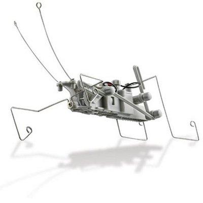 Zelfbouw Robot Insect