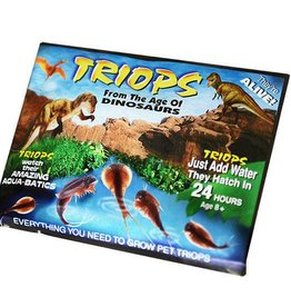 Triops Start Kit - eitjes