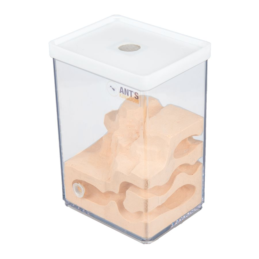 Mierenboerderij Cube L