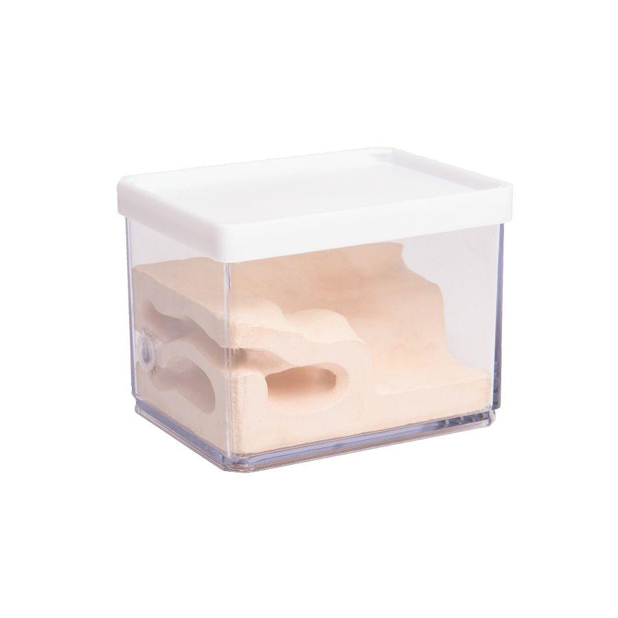 Mierenboerderij Cube S
