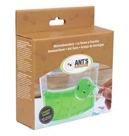 Mierenboerderij Gel inclusief mieren en ledverlichting