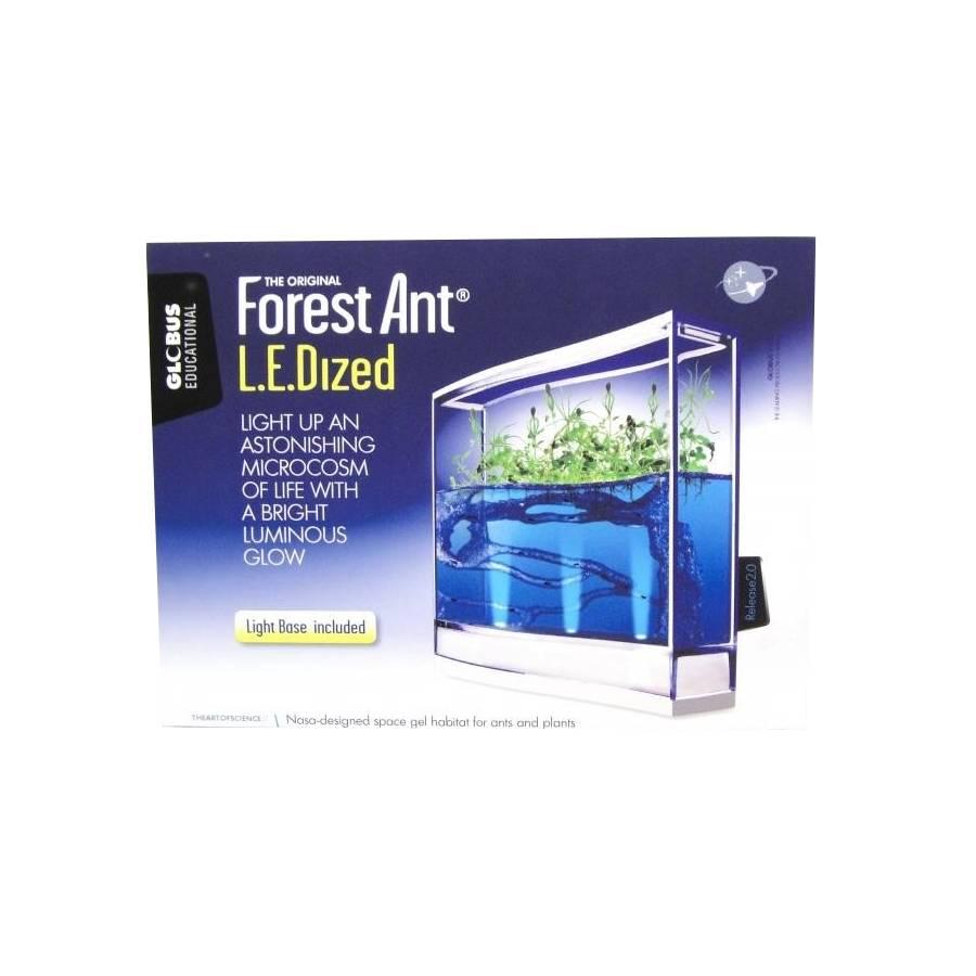 Antquarium Ledlight Forest Mierenboerderij