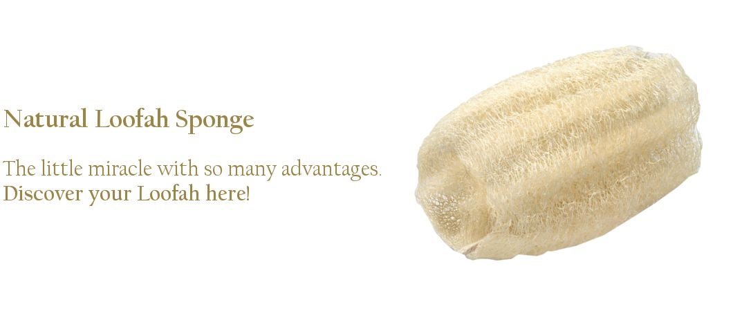 NEW! Pamper your skin and prevent cellulite - get the 100% natural bath sponge and you can say BYE BYE to ingrown hair!