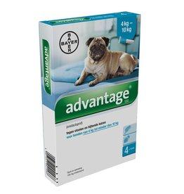 Advantage Advantage Hond 100 4kg-10kg 4 pipetten
