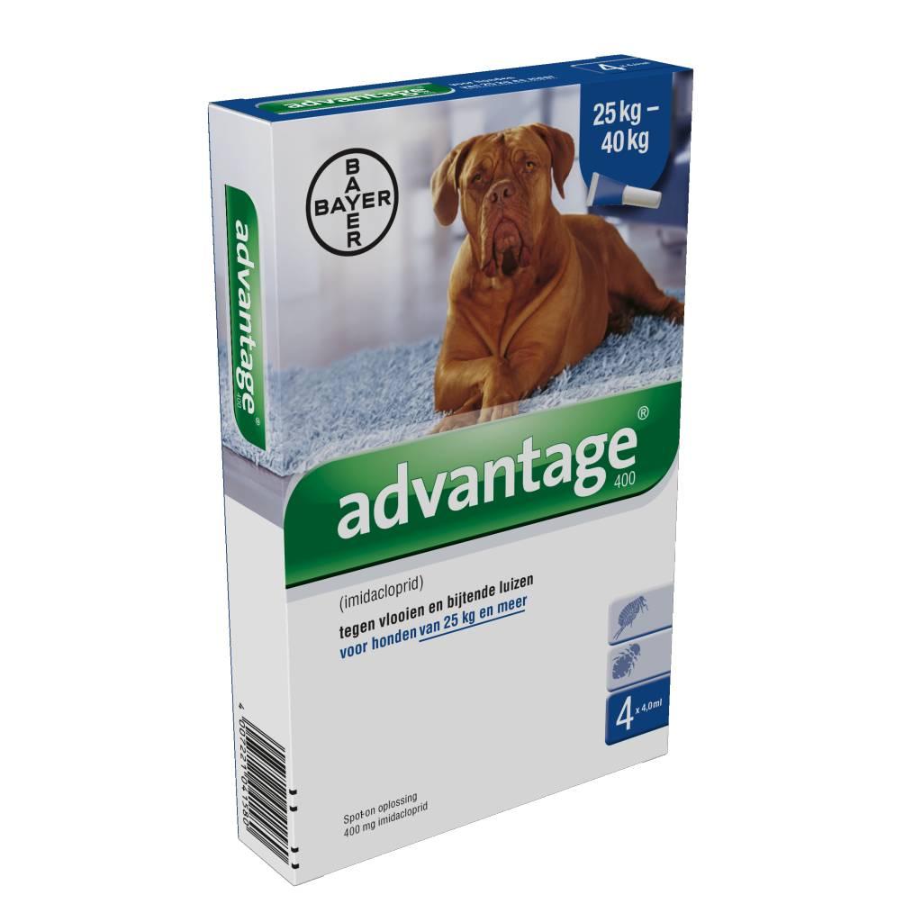 Advantage Advantage 400 Hond 25kg-40kg | tegen vlooien