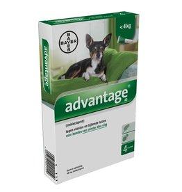 Advantage Advantage Hond 40 tot 4kg 4 pipetten