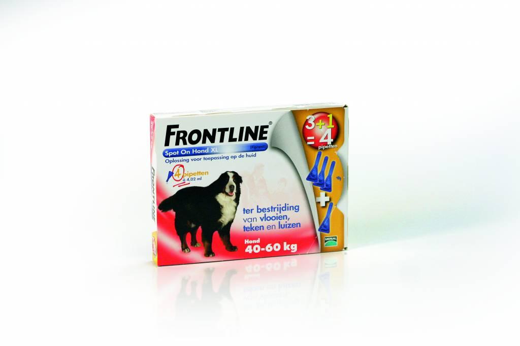 Frontline Frontline Spot On XL Hond 40kg-60kg | tegen vlooien en teken - 4 pipetten