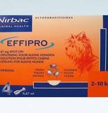 Effipro Effipro Spot On S Hond 2kg-10kg | tegen vlooien en teken - 4 pipetten