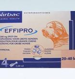 Effipro Effipro Spot On L Hond 20kg-40kg | tegen vlooien en teken - 4 pipetten