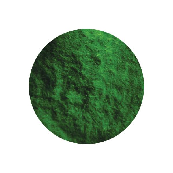 Bell'ure Cashmere Powder Green