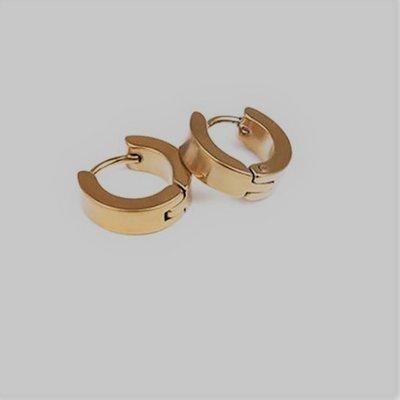 Oorbellen ring titanium staal gouden kleur