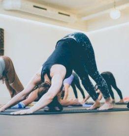 APR & MEI | Intensive basis teacher training power & easyflow yoga