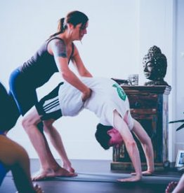 SEP | Psoas & Backbending Workshop