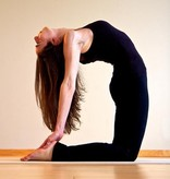 DEC | Workshop Introductie 2nd series Ashtanga yoga