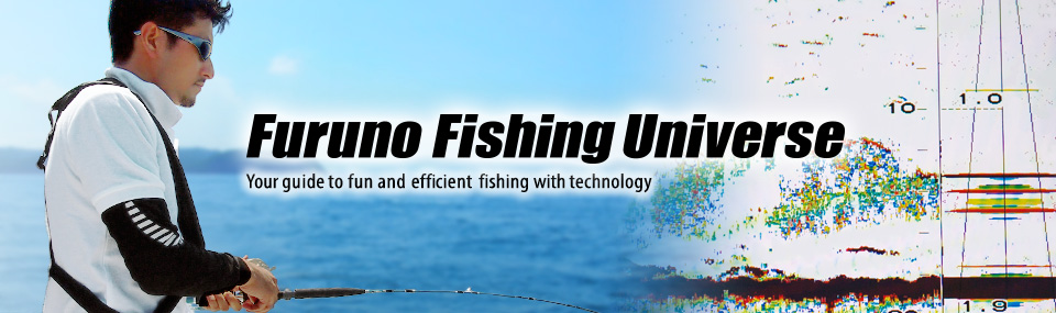 FURUNO and Fish detection