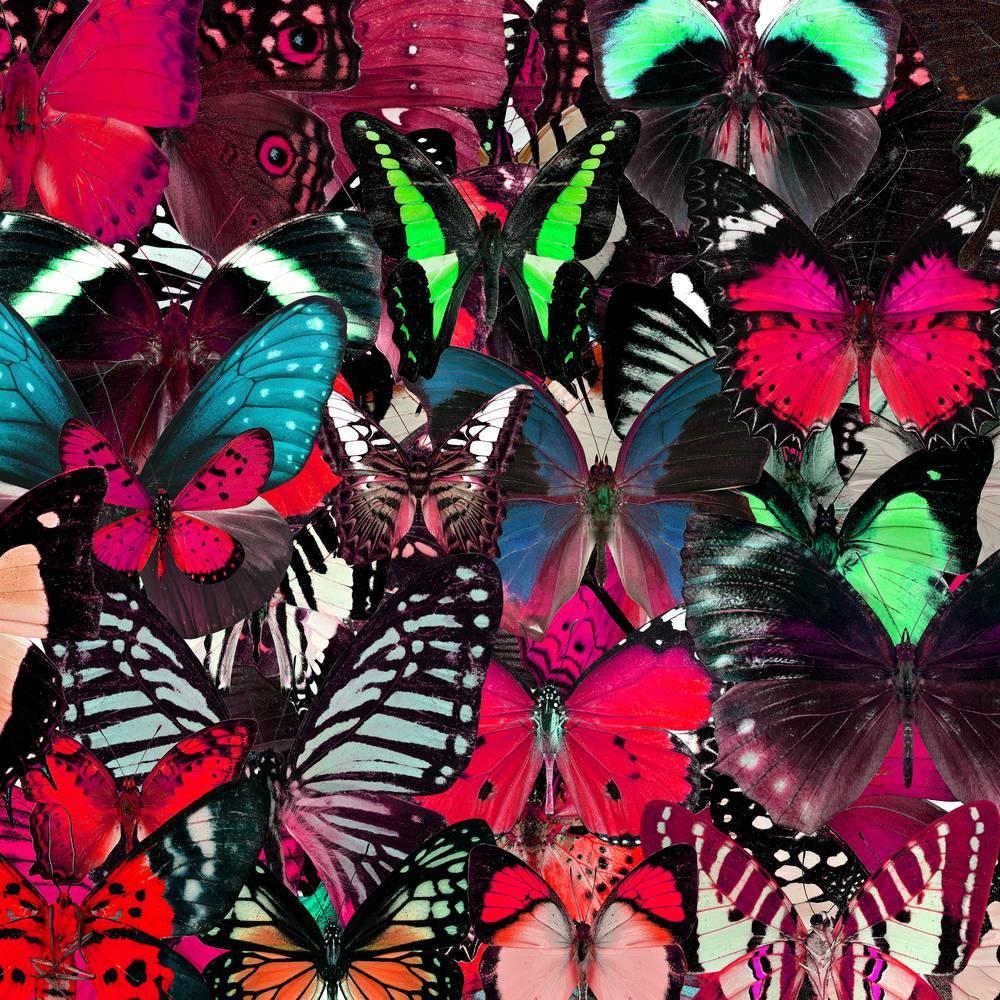Umo Art Gallery UA-SS300874415
