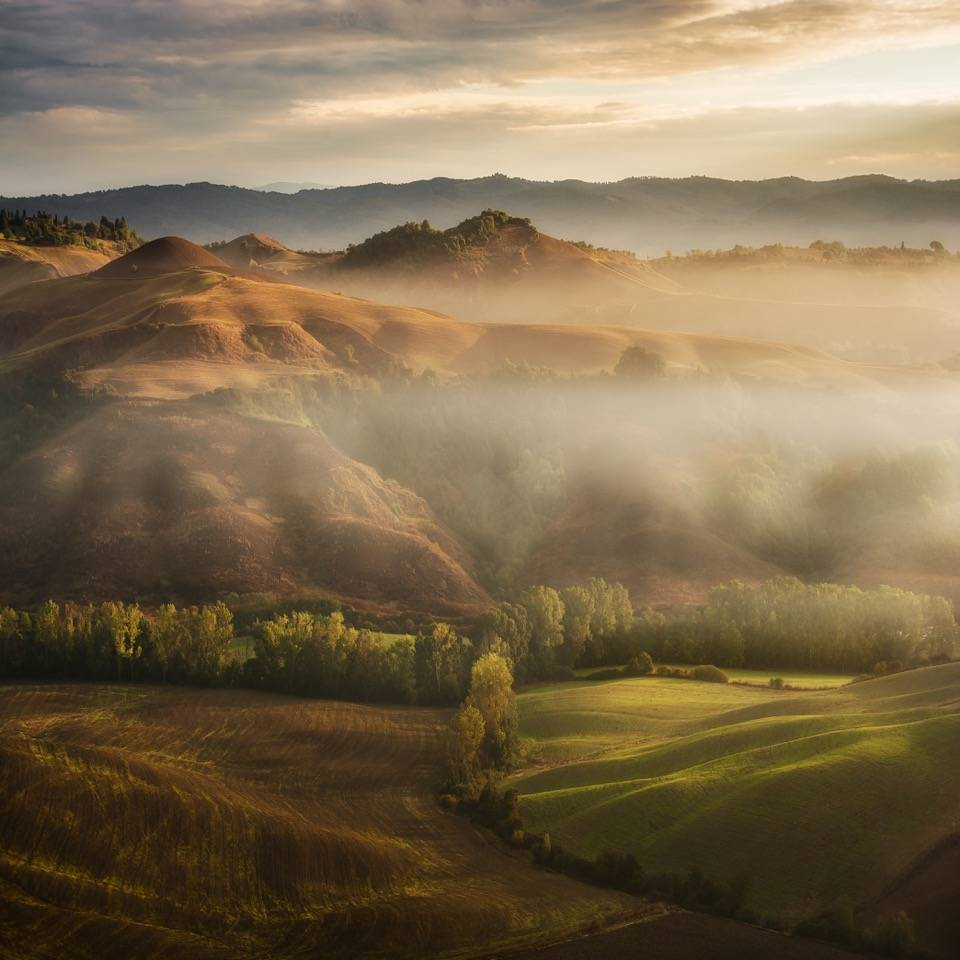Umo Art Gallery Mystical Waving Fields Tuscany