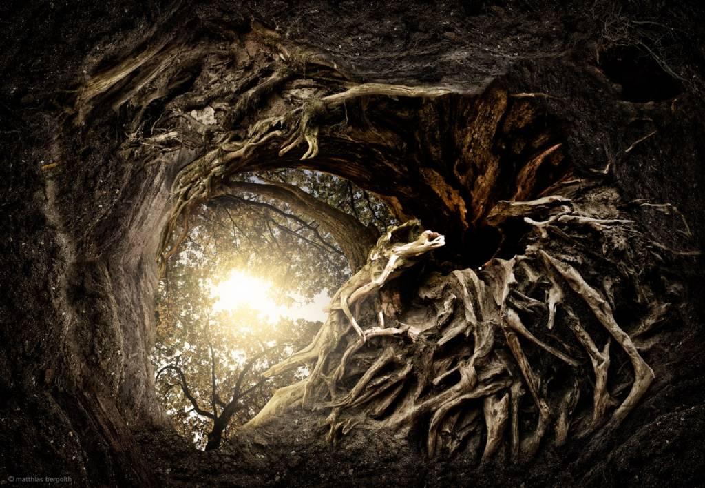 Umo Art Gallery Under The Trees #1