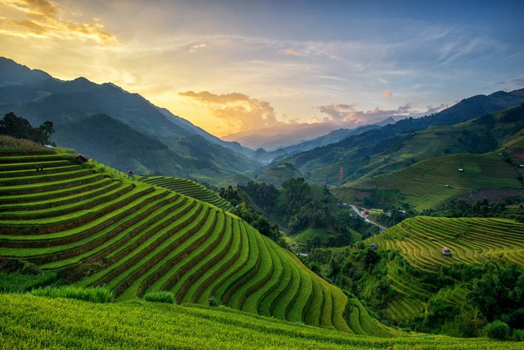 Umo Art Gallery Rice fields on terrace