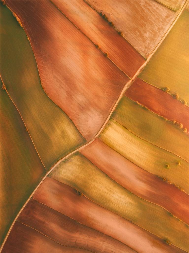 Umo Art Gallery Lines