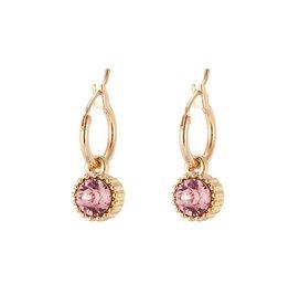 Yehwang Oorbellen Posh Sparkle - Rose- Gold Plated