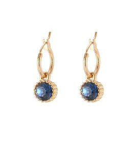 Yehwang Oorbellen Posh Sparkle - Blue - Gold Plated