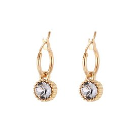 Yehwang Oorbellen Posh Sparkle - Crystal - Gold Plated