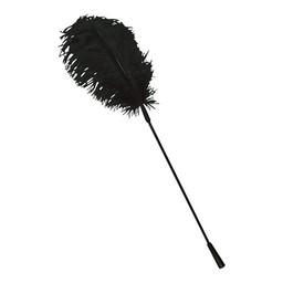 Bad Kitty Black feather Bad Kitty