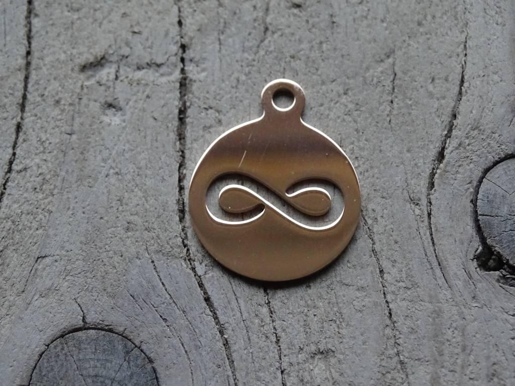 Pinkiezz Charm munt Infinity