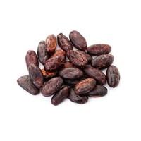 cacao bonen met chocolade raw bio - 125g