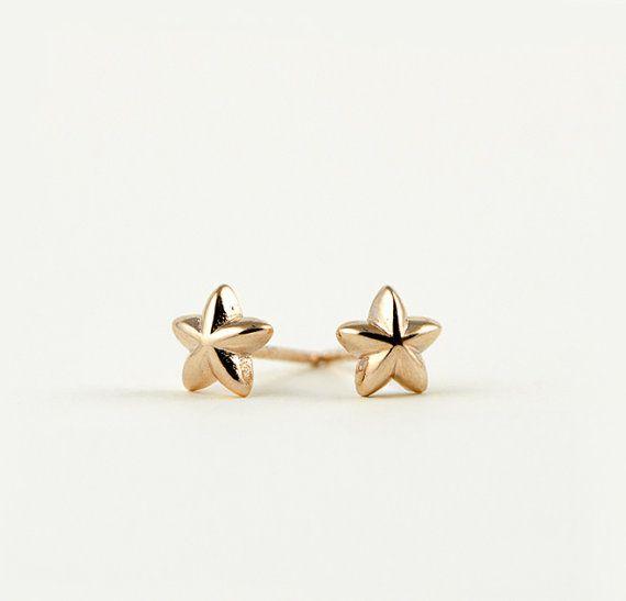 Lunai Star Stud