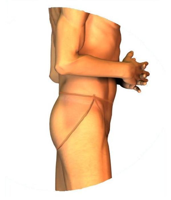 B-Lady Silicone vagina: B-Lady Marie
