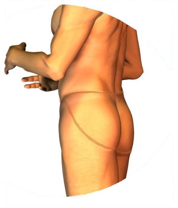 B-Lady Silicone vagina: B-Lady Anna Camel Toe