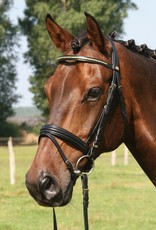 Hans Melzer Horse Equipment Trensenzaum Bredeneek
