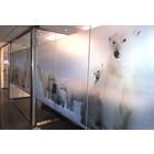 ASLAN DFL-210 PrintEtched Glas