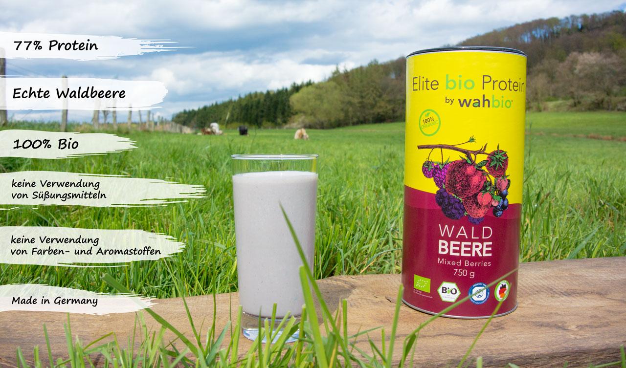 bio-eiweiss-organic-protein-waldbeere-usps