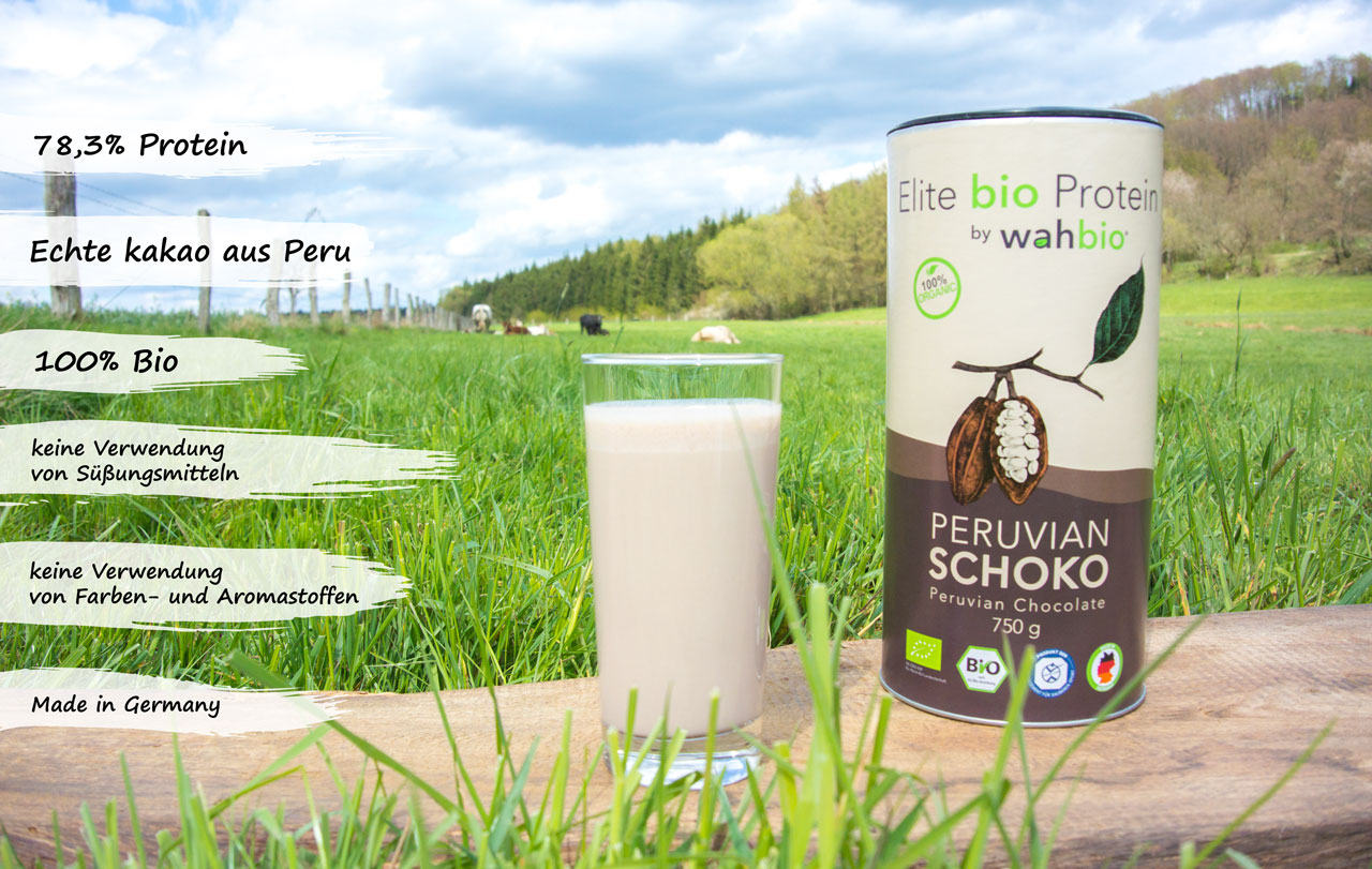 bio-eiweiss-organic-protein-peruvian-schoko-usps