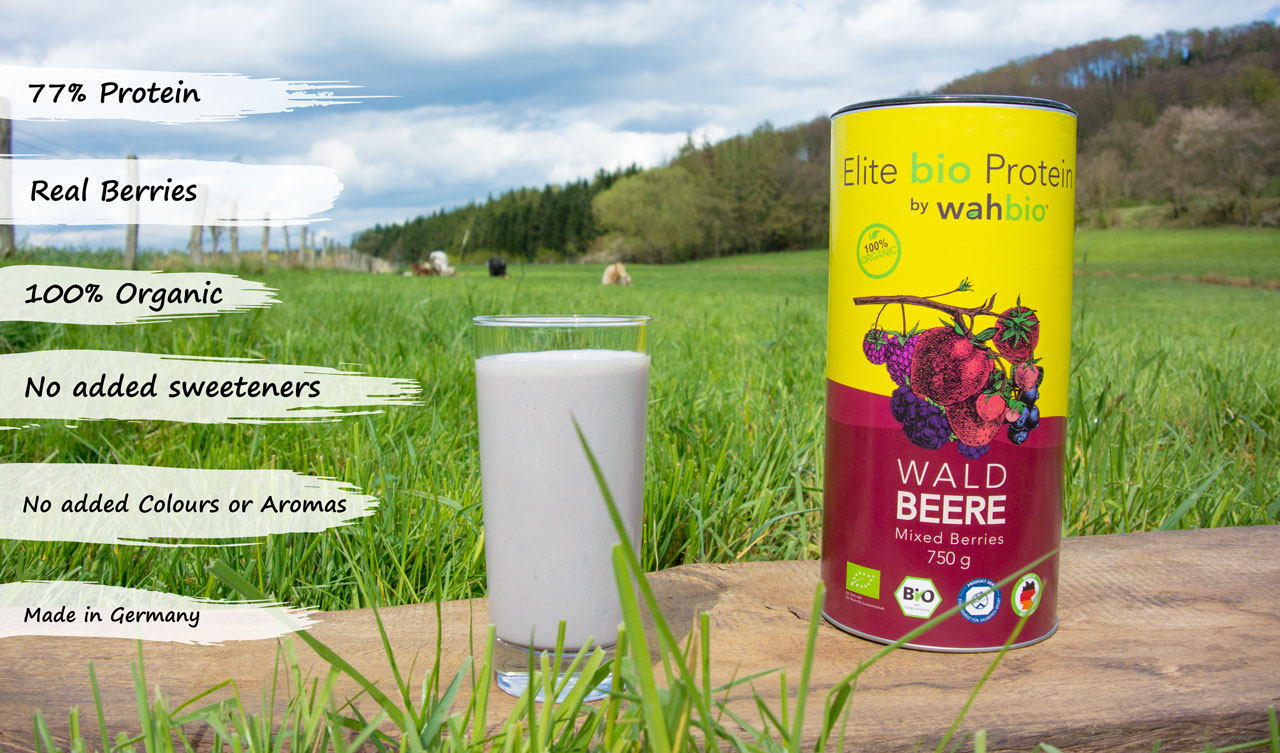 bio-eiweiss-organic-protein-mixed-berries-usps