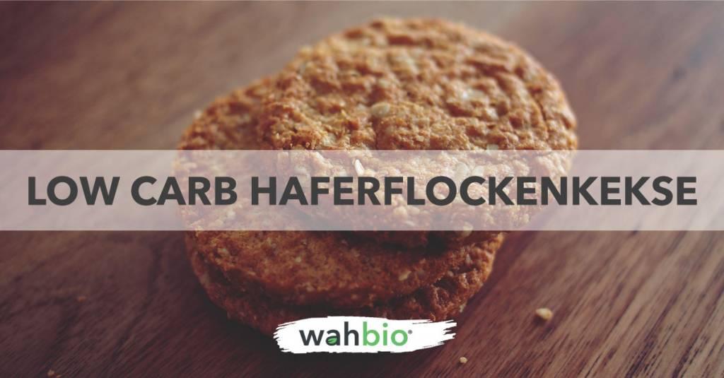 Low Carb, Proteinreiche haferflockenkekse