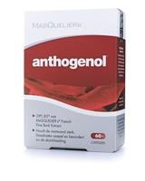 Anthogenol®